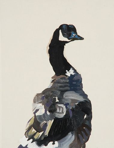 Canadian Goose - Margot Sanders 2008
